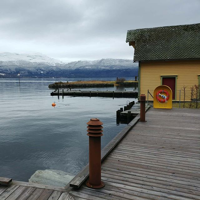 Waiting for the ferry from Jondal to Tørvikbygd #jondal #norway #february #2020