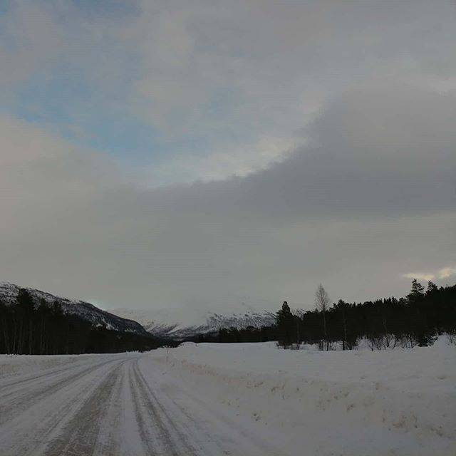 On the road again #nordland #norway #february #2020